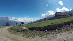 Alpine pasture - amazing views - stock footage