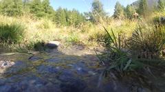 Stock Video Footage of Crisp clean stream water - Mountain Creek