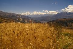 Cordillera negra in peru Stock Photos