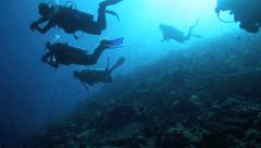 Silhouette of scuba divers descending over coral reef Stock Footage