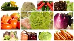 Diverse vegetables montage Stock Footage