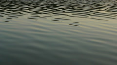 Calm lake water surface in sunset Stock Footage