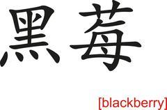 Chinese Sign for blackberry - stock illustration