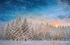 Composite image of fir trees in snowy landscape - stock illustration