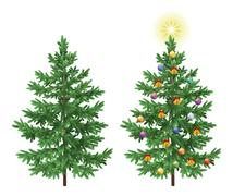 Christmas spruce fir trees with ornaments Stock Illustration