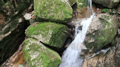 Beautiful mountain brook with a mossy rocks. Kamienczyk gorge Stock Footage