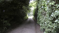 Pathway between high hedges Stock Footage