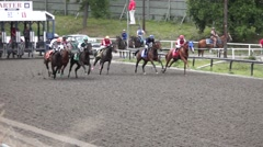 Bred Horse Race Derby - 50 Stock Footage
