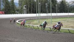 Bred Horse Race Derby - 51 Stock Footage