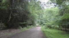 Path Way on Oak Walk Epping Forest Stock Footage