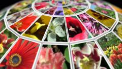 Spinning globe of flowers 3 in 4k Stock Footage