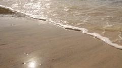 Sea shore at Monkey Mia reserve, Shark Bay National park Stock Footage