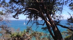 Sailboat in front of the coast of Noosa Australia Stock Footage