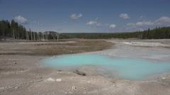 Geyser Basin at Yellowstone National Park in 4K Stock Footage