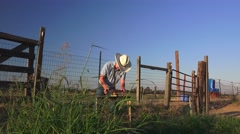 COWBOY RANCHER, shaking hands Stock Footage