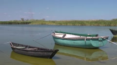 Old fishing boats tethered to the shore Stock Footage
