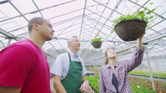 Plant nursery worker helping couple who are shopping for plants at garden centre Stock Footage