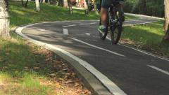 Winding path in the park Stock Footage