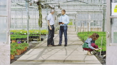 Businessmen in large plant nursery greenhouse shake hands on a deal. - stock footage