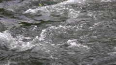 Cool Clear Tranquil Mountain Stream Water Over Rocks Stock Footage