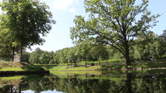 Trees with reflections in Tiergarten Stock Footage
