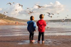 Two adorable kids, feeding the seagulls on the beach Stock Photos