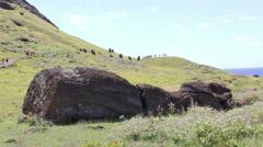 Big Moai on the ground at Rano Raraku Moai Factory, Easter Island, Rapa Nui Stock Footage