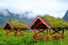 Traditional norwegian arbour standing in a lush in fog Stock Photos