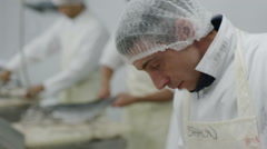 Workers in a seafood processing factory, preparing fresh fish for sale - stock footage