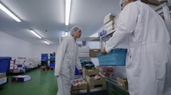 Workers packing boxes of fresh meat in a food processing factory Stock Footage