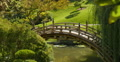 Japanese Garden Bridge 01 Web Footage