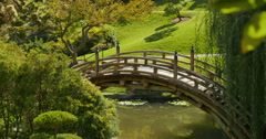 Japanese Garden Bridge 01 Stock Footage