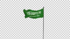 Saudi arabia flag Stock Footage