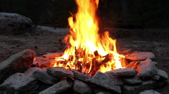 Campfire in Woods Stock Footage