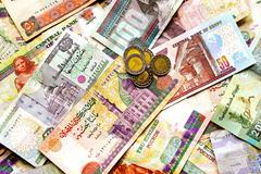 egyptian pounds - stock photo