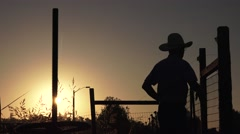 COWBOY ,standing tall Stock Footage