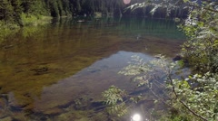 Rodgers Lake, part of Capilano Watershed. North Vancouver  BC Canada Stock Footage
