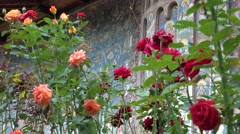 ULTRA HD 4K Beautiful painted old church among rose flower blue picture landmark Stock Footage