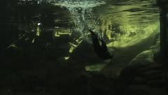An otter diving through water Stock Footage