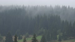 ULTRA HD 4K Beautiful fog covered mountain forest tree holiday resort morning  Stock Footage