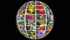 Spinning globe of flowers 5 in 4k Stock Footage