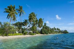 palm fringed white sand beach on an islet of vavau, vavau islands, tonga, sou - stock photo
