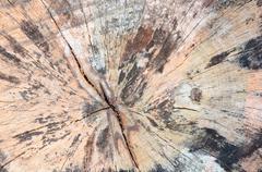 Crack wood background Stock Photos