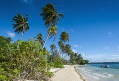 Palm fringed white sand beach on an islet of vavau, vavau islands, tonga, sou Stock Photos