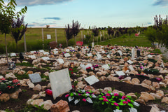 Cemetery Pet In Hunedoara City - stock photo
