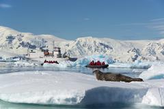 People in small inflatible zodiac rib boats. A crabeater seal on the ice. Stock Photos