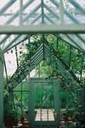 A wooden frame conservatory with plants. Stock Photos