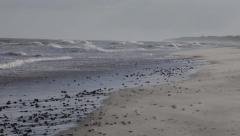 Sand blowing across Winterton beach Stock Footage