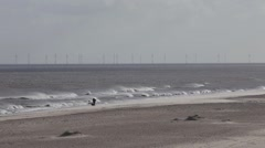 Man and his dog walking on windy beach Stock Footage