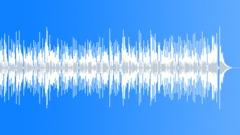 Southern Hyjinx (WP) 02 Alt1 (banjo,acoustic,playful,positive,fun,comedy) Stock Music